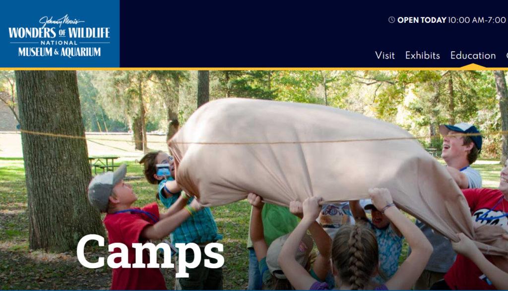 wonders of wildlife summer camps