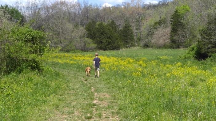 hiking through a field at busiek