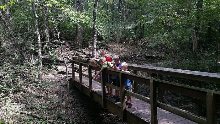 kids on a bridge at the springfield nature center